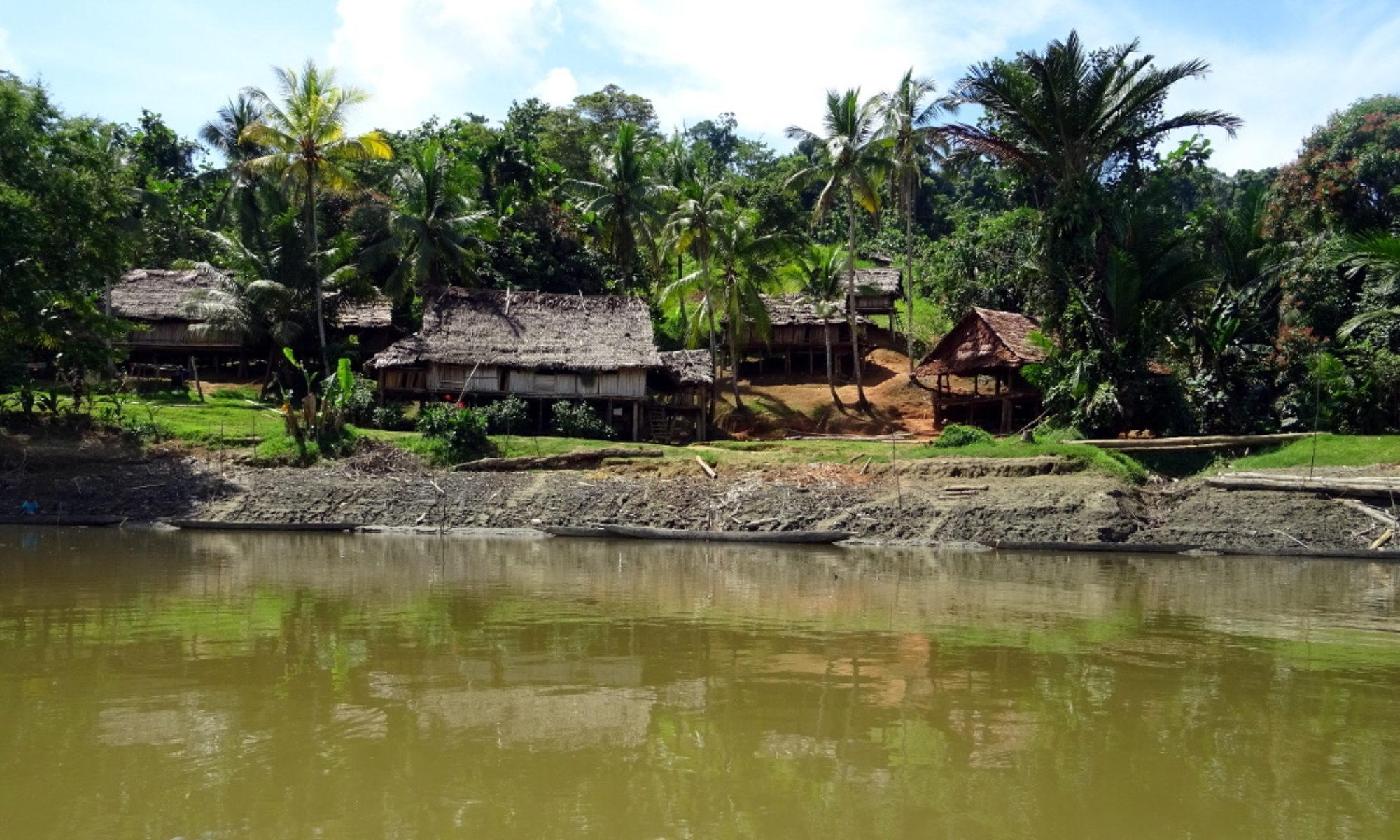 Papuan Past Project